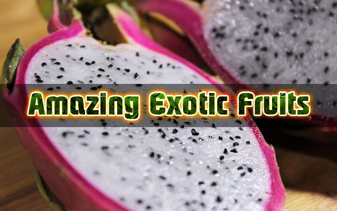 Photo of Amazing Exotic Fruits